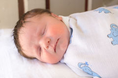 Baby indoors sleeping Stock Image