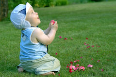 Baby infant. Little baby infant on the green grass Royalty Free Stock Photos