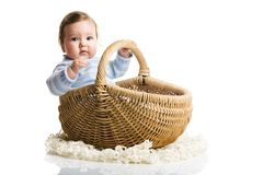 Baby inside the basket. A photo of baby in the basket, isolated Royalty Free Stock Photo
