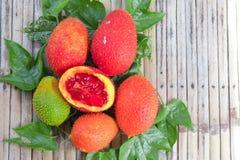 Baby jackfruit, Cochinchin gourd, Spiny bitter gourd, Gac fruit, Royalty Free Stock Photography