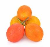 Baby Jackfruit, Doornige Bittere Pompoen, Zoete Grourd op witte achtergrond Royalty-vrije Stock Afbeelding