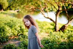 Baby 4 Jahre, mit blauen Augen, kleine Locken Eine wunderbare Zeit der Kindheit und des Abenteuers Warmes Sonnenlicht Stellung in stockfoto
