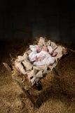 Baby Jesus auf einer Krippe Lizenzfreie Stockbilder