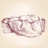 Baby Jesus im gezeichneten Vektor der Krippe Hand Stockfotografie