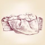 Baby Jesus in the  manger hand drawn vector Stock Photography