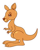 Baby Kangaroo. Cute little kangaroo vector illustration vector illustration
