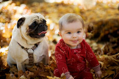 Baby Kid with Pug Dog Stock Photo