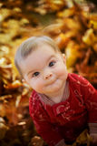 Baby kid in yellow leaves Stock Photos