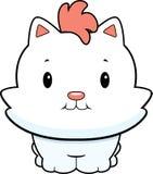 Baby Kitten Stock Image