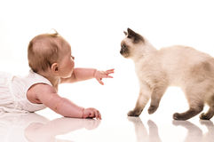 Baby with kitten Royalty Free Stock Images