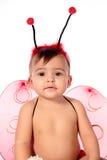 Baby and ladybug Stock Photo