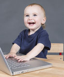 Baby with laptop computer in grey background Stock Images