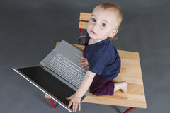 Baby with laptop computer in grey background Stock Photos