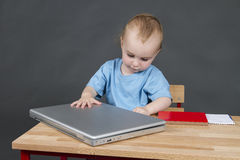 Baby with laptop computer in grey background Stock Photo