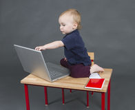 Baby with laptop computer in grey background Royalty Free Stock Photo