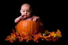 Baby in Large Pumpkin Isolated on Black Royalty Free Stock Images