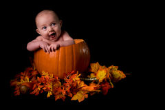 Baby in Large Pumpkin Isolated on Black Royalty Free Stock Photography