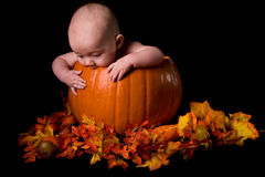 Baby in Large Pumpkin Isolated on Black Stock Image