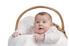 Baby in laundry basket Royalty Free Stock Photo