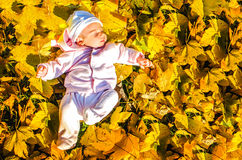 Baby autumn leaf lay foliage ground Royalty Free Stock Photo