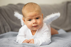 Baby laying on his stomach with angel wings attached Stock Image