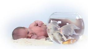 Baby lays nex to to a fish bowl stock video footage
