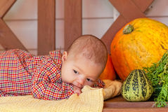 Baby lays on a wooden bench Stock Photos