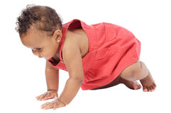 Baby learning to walk. Adorable baby learning to walk a over white background Royalty Free Stock Photography