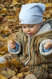 Baby in leaves Royalty Free Stock Photos