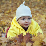 Baby in leaves Royalty Free Stock Image