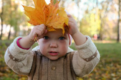 Baby with leaves Stock Photos