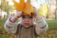 Baby with leaves Stock Images