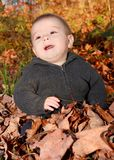 Baby and leaves Stock Images