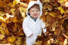 Baby in the leaves Royalty Free Stock Image