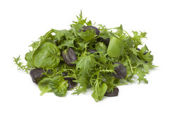 Free Baby Leaves Lettuce Royalty Free Stock Photos - 29301608