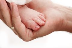 Baby leg in father's hand Stock Photography