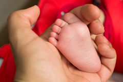 Baby leg in hand Stock Photos