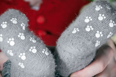 Baby legs Stock Photography