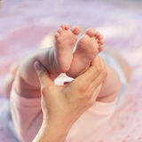 Baby legs. Legs newborn in parents hand Stock Image