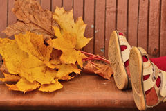 Baby legs in sandals and yellow maple leaves lying on bench Royalty Free Stock Images