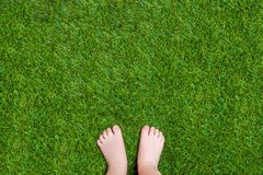 Baby legs standing  on green summer grass Stock Photo