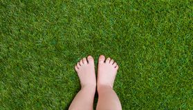 Baby Legs Standing On Green Grass Stock Photography