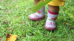 Baby Legs Walking on the Grass stock footage