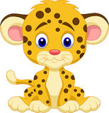 Baby leopard cartoon Stock Images
