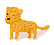 Baby leopard flat style icon Stock Photos