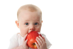 Baby licking a red apple Stock Photo