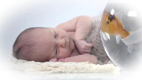 Baby lies next to a fish bowl looks at the fishes stock video