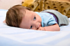 Baby lies on stomach stock photography