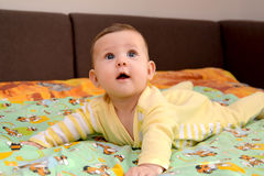 The baby lies on a stomach and with astonishment looks up Stock Photo