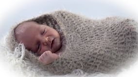 Baby lies in woollen cover with it's hands stretched. Baby is covered in brown woollen cloth shot on a white background stock video
